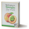 ebook: bankruptcy in georgia - the truth