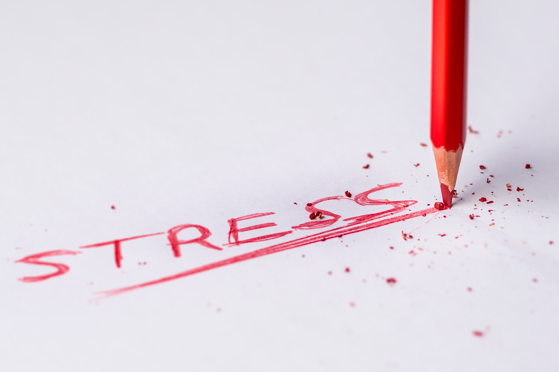 Bankruptcy Stress